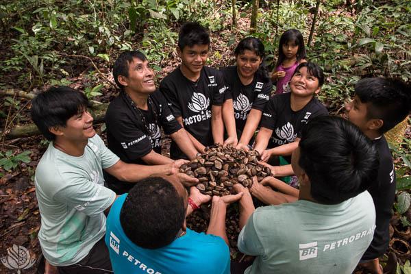 Projeto Pacto da Floresta
